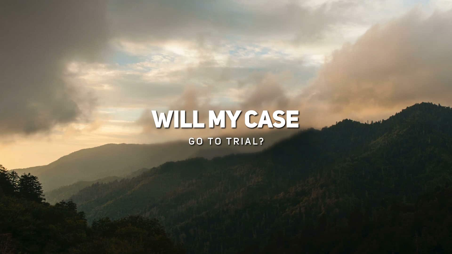 Will My Case Go to Trial